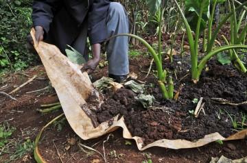 Conserving_soil_water_on_Kenyan_farm-940x624